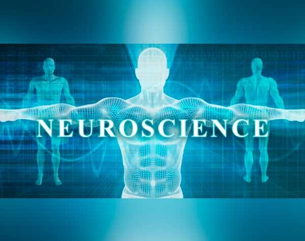 neurociencia para deportistas